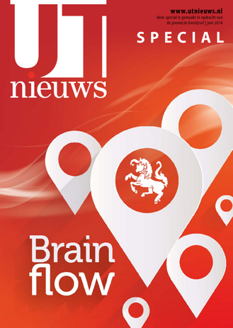 Brainflow cover